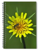 Pollination Spiral Notebook