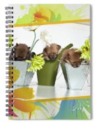 Pomeranian 4 Spiral Notebook