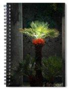Pompeii Palm Tree Italy Spiral Notebook