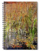 Pond And Rushes Spiral Notebook