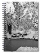 Pond Mystere Spiral Notebook