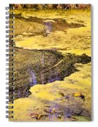 Pond Scum One Spiral Notebook