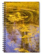 Pond Scum Two Spiral Notebook