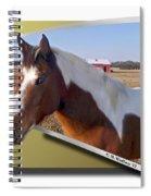 Pony Posing Spiral Notebook