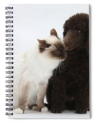 Poodle Pup And Cat Spiral Notebook