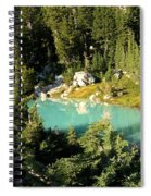 Pool In The Forest Spiral Notebook
