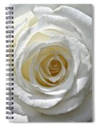 Pope John II Rose Spiral Notebook