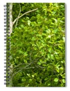 Poplar Tree And Leaves No.368 Spiral Notebook