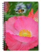 Poppies And Pollinator Spiral Notebook