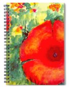 Poppies Face To The Sun Spiral Notebook