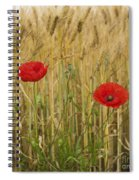 Poppies  In A Field Of Barley Spiral Notebook