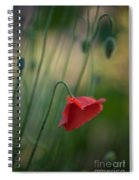 Poppies Mood Spiral Notebook