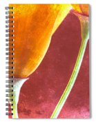 Poppies On Red  Spiral Notebook