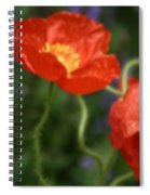 Poppies With Impressionist Effect Spiral Notebook