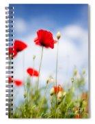 Poppy Flowers 06 Spiral Notebook