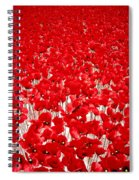 Poppy Meadow ... Spiral Notebook