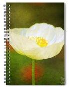 Poppy Of White Spiral Notebook
