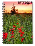 Poppy Patch And Previsualization Spiral Notebook