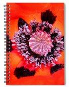Poppy's Heart Spiral Notebook