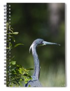 Portrait Of A Heron Spiral Notebook