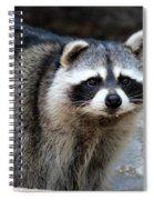 Portrait Of A Masked Bandit Spiral Notebook