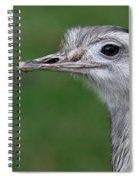 Portrait Of A Rhea Spiral Notebook
