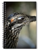 Portrait Of A Roadrunner  Spiral Notebook