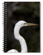 Portrait Of An Egret Spiral Notebook