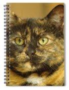 Portrait Of Ginny Spiral Notebook