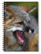 Portrait Of Gray Fox Barking Spiral Notebook