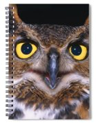 Portrait Of Great Horned Owl Spiral Notebook