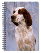 Portrait Of Irish Red And White Setter Spiral Notebook