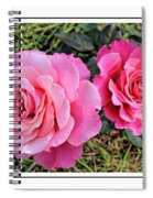 Portrait Of Sister Roses Spiral Notebook
