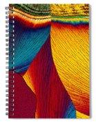 Potassium Nitrate Spiral Notebook