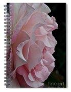 Powder Puff Pink Spiral Notebook