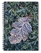 Powerscourt Estate, County Wicklow Spiral Notebook