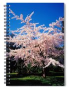 Powerscourt Gardens, Powerscourt Spiral Notebook