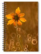 Prairie Coreopsis And Dewdrops Spiral Notebook