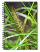 Prairie Dropseed Spiral Notebook