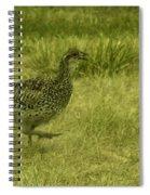 Prarie Chicken At Battle Of Little Bighorn Site Spiral Notebook
