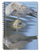 Preening My Feathers Spiral Notebook