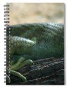Prehensil Tailed Skink Spiral Notebook