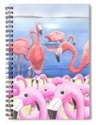 Preposterous Spiral Notebook