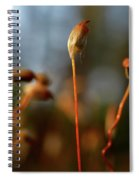 Press Conference Spiral Notebook