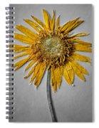 Pressed Sunshine Flower Spiral Notebook