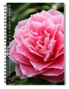 Pretty Belinda Spiral Notebook