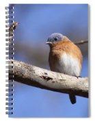 Pretty Boy Spiral Notebook