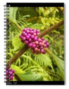Pretty In Pink Berrys Spiral Notebook