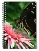 Pretty On Pink Spiral Notebook