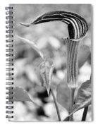 Pretty Pulpit Spiral Notebook